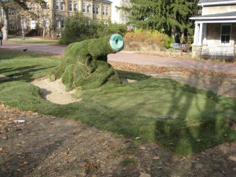 Photo of cannon covered in sod by turf students